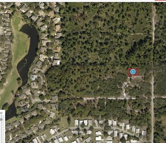 Golden Circle, Mount Dora, FL 32757 (MLS #R4904334) :: Gate Arty & the Group - Keller Williams Realty Smart