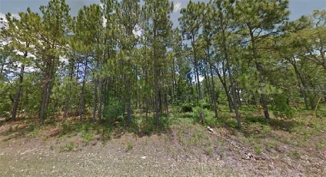 2391 W Elmore Loop, Citrus Springs, FL 34434 (MLS #R4904519) :: Everlane Realty