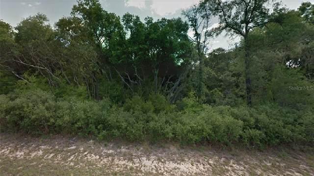 7967 N Darby Drive, Citrus Springs, FL 34433 (MLS #R4904527) :: CGY Realty