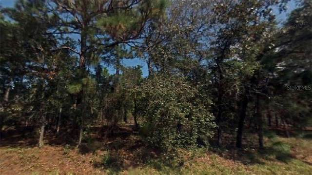 SW Huckle Berry Lane, Dunnellon, FL 34431 (MLS #R4904756) :: The Hustle and Heart Group