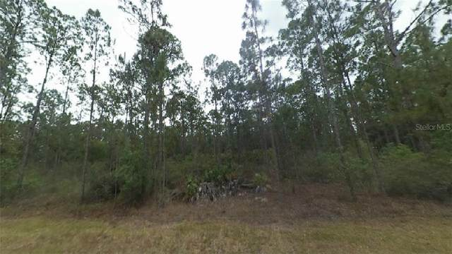 207 Indian Lake Drive, Indian Lake Estates, FL 33855 (MLS #R4904773) :: The Hustle and Heart Group