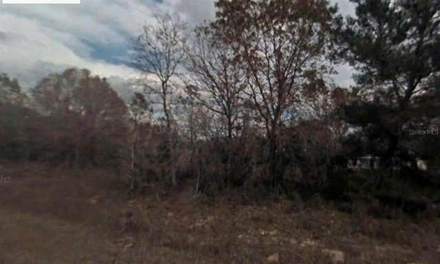 Fisher Course, Ocklawaha, FL 32179 (MLS #R4904834) :: Rabell Realty Group