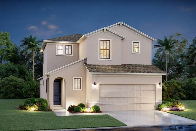 8718 Firefly Place, Parrish, FL 34219 (MLS #R4904867) :: The Robertson Real Estate Group