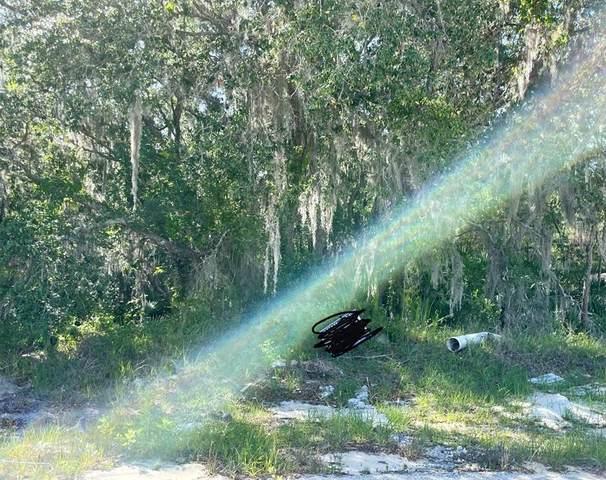 1652 Redfin Drive, Poinciana, FL 34759 (MLS #R4904887) :: Frankenstein Home Team