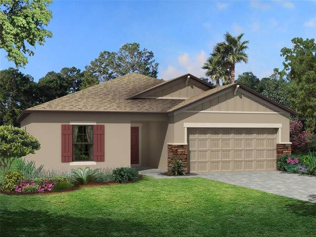Palmetto, FL 34221 :: Everlane Realty
