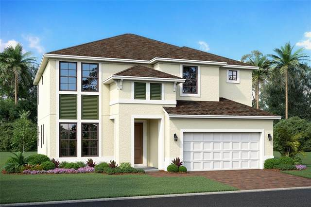 5651 Trevesta Place, Palmetto, FL 34221 (MLS #R4904998) :: Zarghami Group