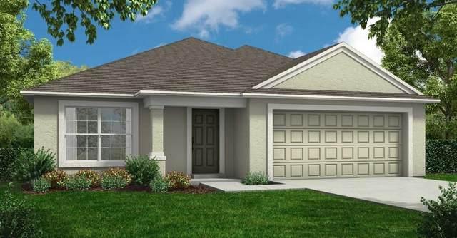 4510 San Lorenzo Drive, Sebring, FL 33872 (MLS #R4905264) :: The Duncan Duo Team