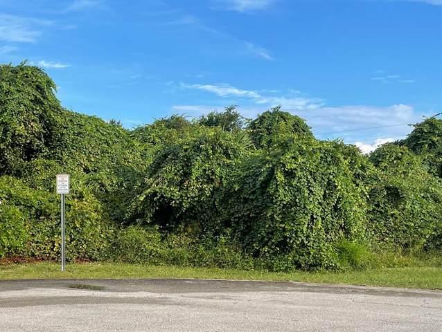 3145 Cabot Court, Deltona, FL 32738 (MLS #R4905308) :: SunCoast Home Experts