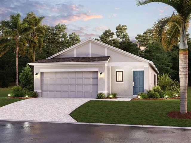 16831 Celebration Drive, Port Charlotte, FL 33953 (MLS #R4905341) :: The Truluck TEAM