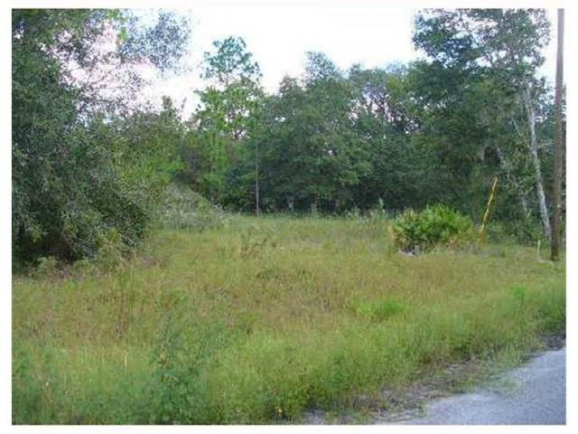Fisher Way Trail TR, Weirsdale, FL 32195 (MLS #S4630461) :: The Duncan Duo Team