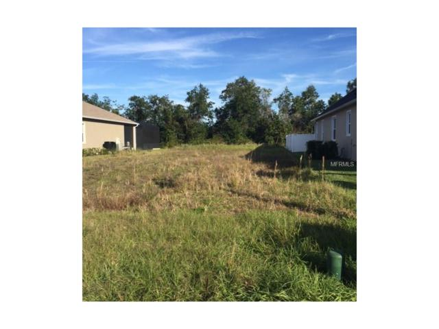 7120 Indian Grass Road, Harmony, FL 34773 (MLS #S4826025) :: The Duncan Duo Team