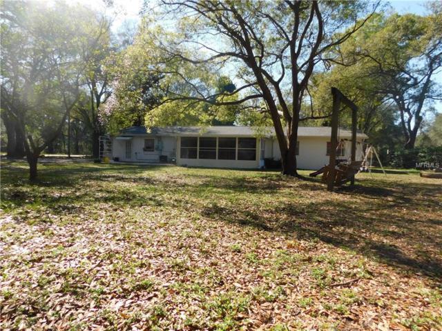 2101 Ramblewood Lane, Brandon, FL 33510 (MLS #S4848187) :: Team Pepka