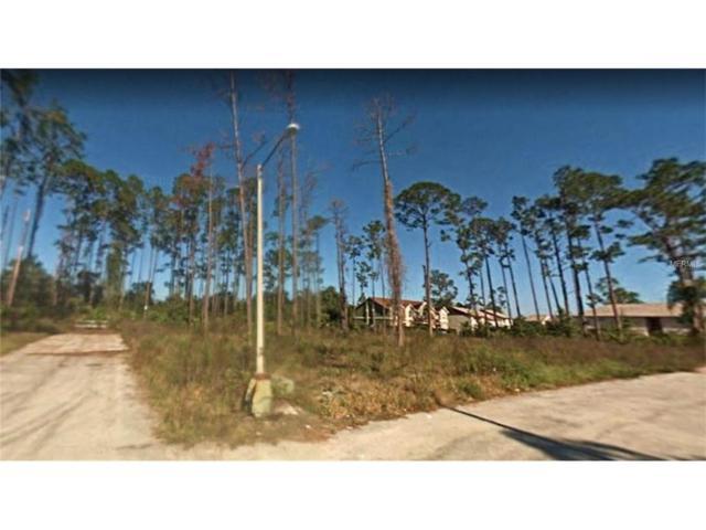 Hart Lane, Kissimmee, FL 34743 (MLS #S4848822) :: Team Pepka