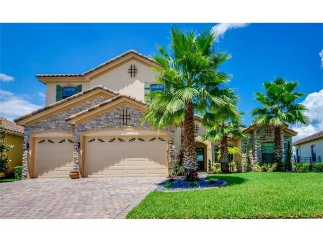 9742 Hatton Circle, Orlando, FL 32832 (MLS #S4848945) :: Delgado Home Team at Keller Williams
