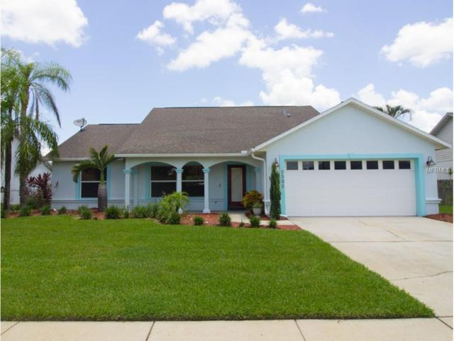 2332 Sweetwater Boulevard, Saint Cloud, FL 34772 (MLS #S4849207) :: Godwin Realty Group