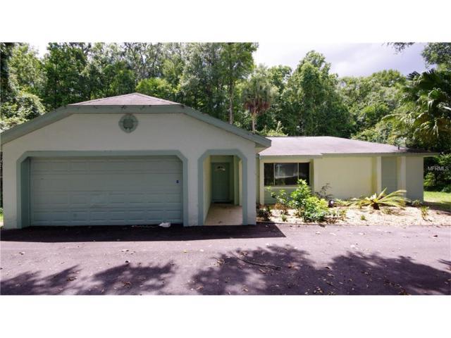 1698 N Goodman Road, Kissimmee, FL 34747 (MLS #S4849239) :: Godwin Realty Group