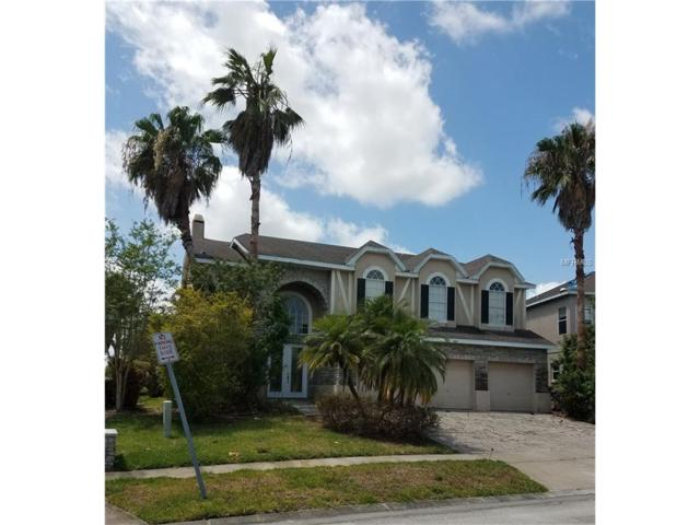 2606 Roughside Circle, Kissimmee, FL 34746 (MLS #S4849252) :: Cartwright Realty