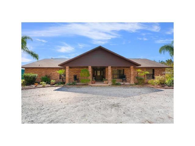 1195 Sunlight Court, Saint Cloud, FL 34771 (MLS #S4849322) :: Godwin Realty Group