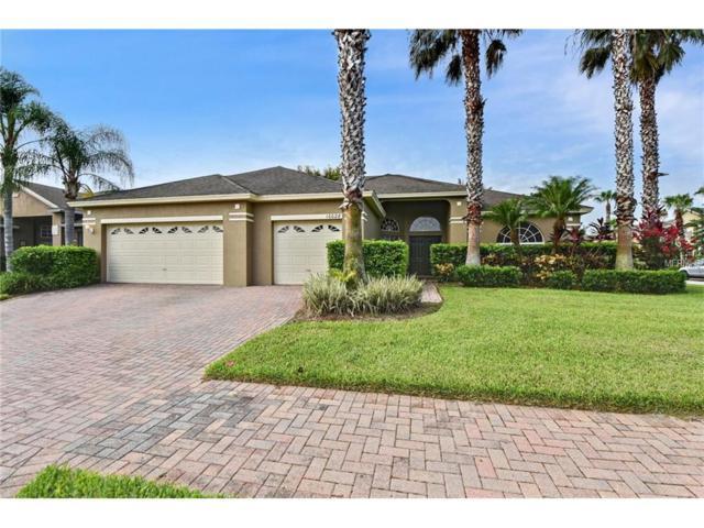 10028 Chardonnay Drive, Orlando, FL 32832 (MLS #S4849640) :: Godwin Realty Group