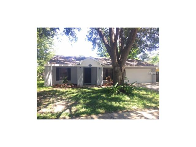 1617 Crystalview Trail, Lakeland, FL 33801 (MLS #S4850272) :: Gate Arty & the Group - Keller Williams Realty