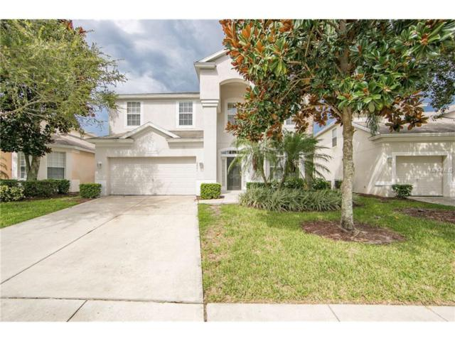 2621 Daulby Street, Kissimmee, FL 34747 (MLS #S4850423) :: RE/MAX Realtec Group