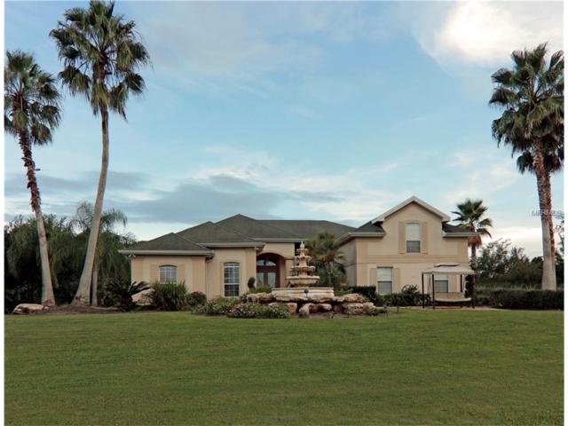 4104 Foxtail Court, Kissimmee, FL 34746 (MLS #S4850473) :: Premium Properties Real Estate Services