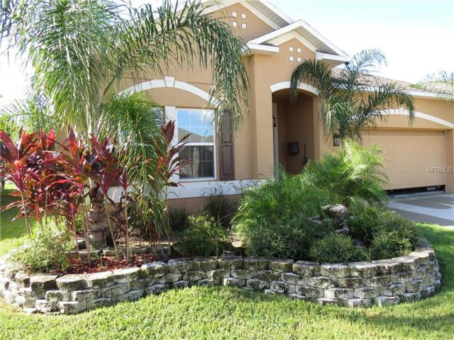 2884 Moonstone Bend, Kissimmee, FL 34758 (MLS #S4850505) :: RE/MAX Realtec Group