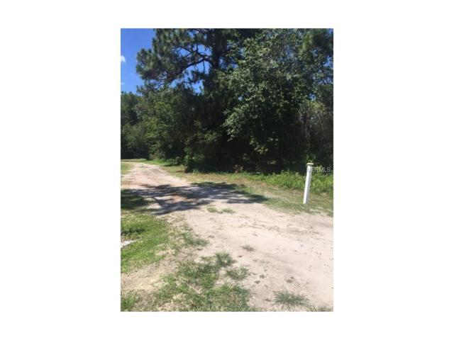 Day Break Drive, Kissimmee, FL 34744 (MLS #S4850510) :: RE/MAX Realtec Group