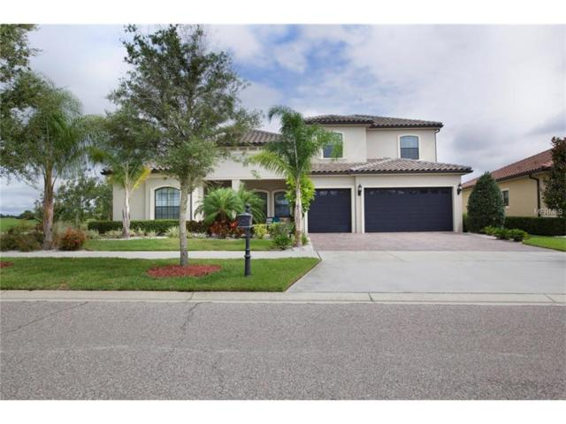 10501 Middlewich Drive, Orlando, FL 32832 (MLS #S4851229) :: Godwin Realty Group