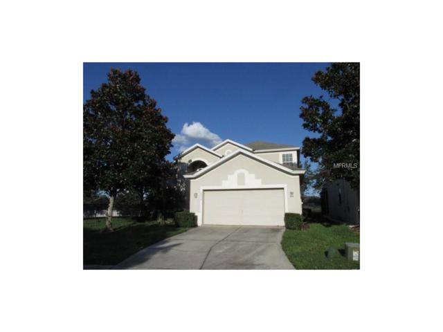 2695 Manesty Lane, Kissimmee, FL 34747 (MLS #S4852794) :: RE/MAX Realtec Group