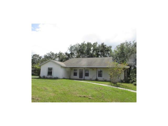 4748 Lark Drive, Saint Cloud, FL 34772 (MLS #S4852853) :: Griffin Group
