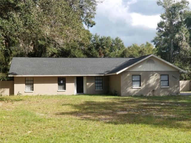7420 Alafia Drive, Riverview, FL 33578 (MLS #S4853617) :: Dalton Wade Real Estate Group