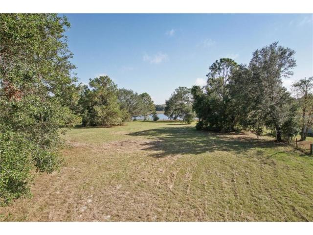Se 165Th Avenue, Weirsdale, FL 32195 (MLS #S4853714) :: G World Properties