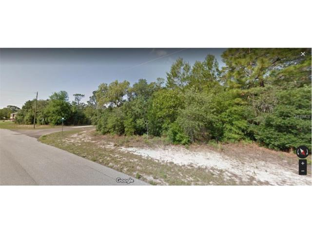 8694 N Gilovu Drive, Citrus Springs, FL 34433 (MLS #S4853753) :: G World Properties