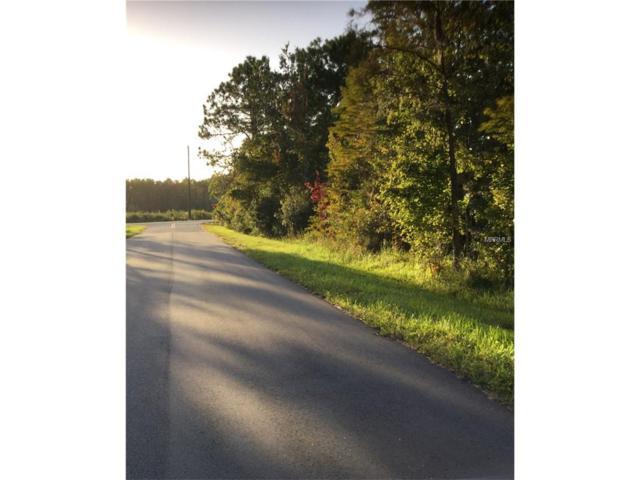8945 Salem Road, Saint Cloud, FL 34773 (MLS #S4853891) :: The Duncan Duo Team