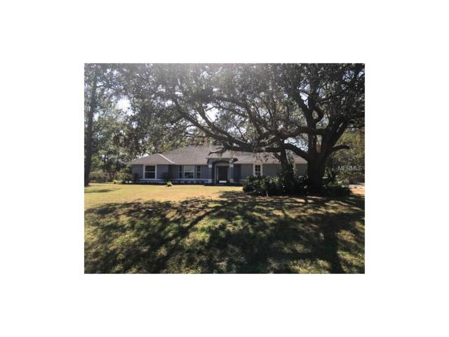 1415 Englewood Drive, Saint Cloud, FL 34772 (MLS #S4853907) :: Godwin Realty Group