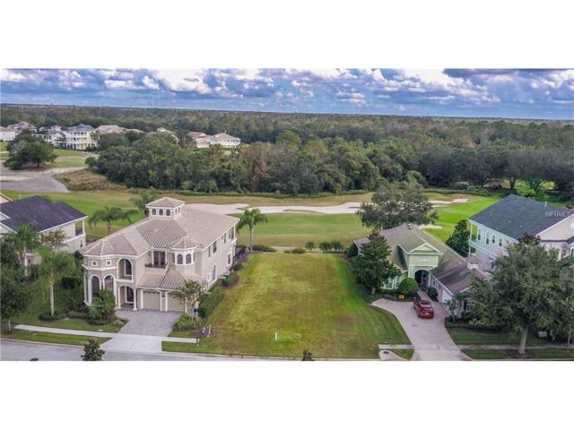 1213 Radiant Street, Reunion, FL 34747 (MLS #S4854040) :: G World Properties