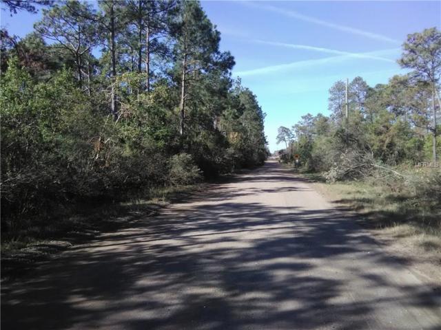 Lot 300 Kiowa Trail, Kissimmee, FL 34747 (MLS #S4855180) :: The Duncan Duo Team