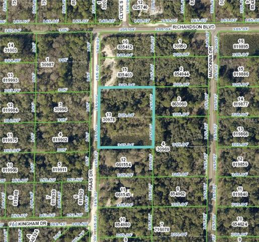 Haas Drive, Webster, FL 33597 (MLS #S4856035) :: Premium Properties Real Estate Services