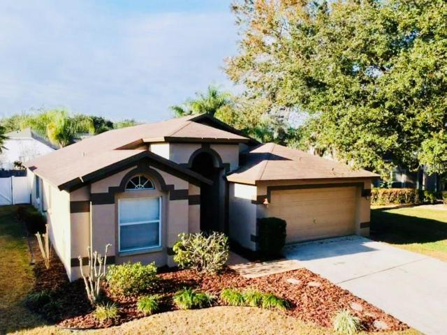 4510 Compass Oaks Drive, Valrico, FL 33596 (MLS #S4856092) :: Griffin Group