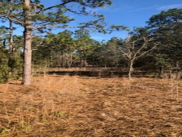 Sw Lemon Hill Dr Lot 22, Dunnellon, FL 34431 (MLS #S4857897) :: The Duncan Duo Team