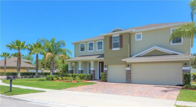 313 Skyview Place, Chuluota, FL 32766 (MLS #S4858062) :: Griffin Group