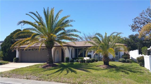 9021 Prosperity Lane, Port Richey, FL 34668 (MLS #S4858632) :: Jeff Borham & Associates at Keller Williams Realty