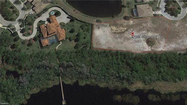 9133 Stromboli Court, Kissimmee, FL 34747 (MLS #S4858734) :: The Duncan Duo Team