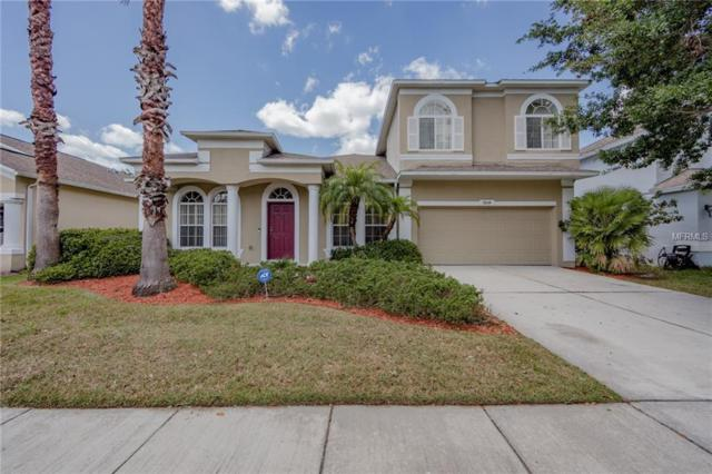 9614 Bay Pine Lane, Orlando, FL 32832 (MLS #S5000313) :: The Light Team