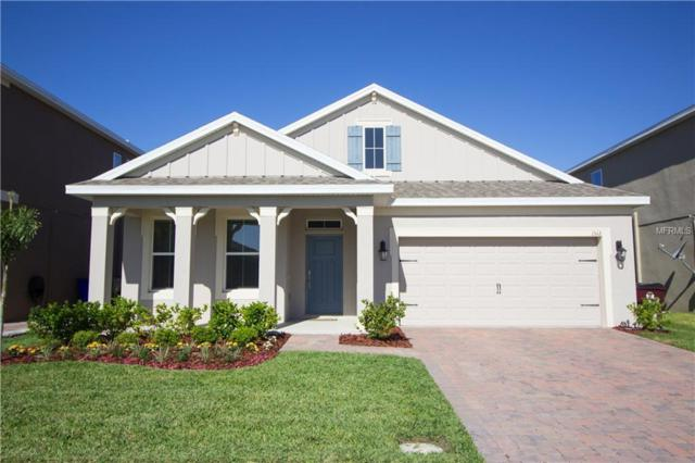 1512 Caterpillar Street, Saint Cloud, FL 34771 (MLS #S5000357) :: The Lockhart Team