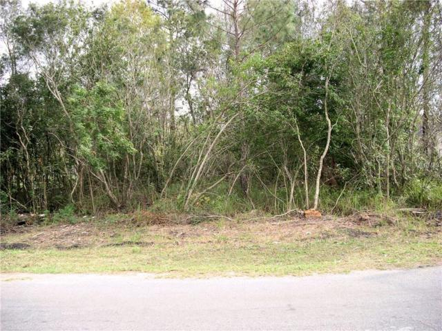 18 Peterlee Court, Kissimmee, FL 34758 (MLS #S5000366) :: RealTeam Realty