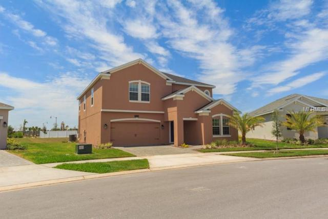 4626 Fairy Tale Circle, Kissimmee, FL 34746 (MLS #S5000386) :: Griffin Group