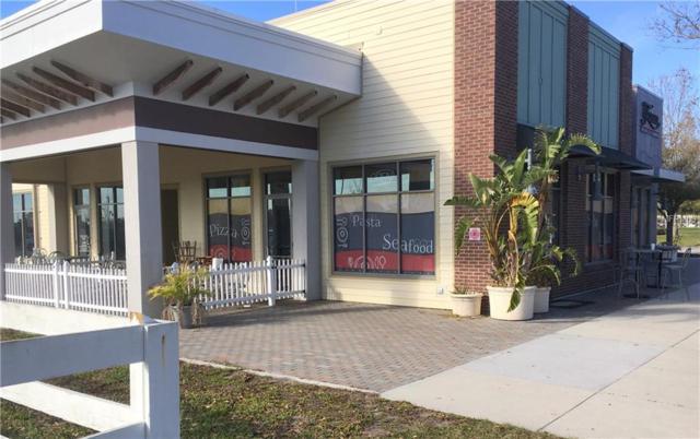 724 S Harmony Square, Harmony, FL 34773 (MLS #S5000420) :: Godwin Realty Group