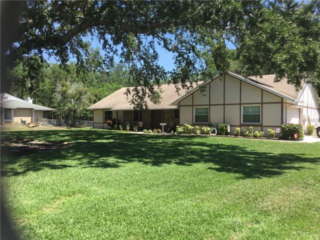 1725 Tanglewood Drive, Kissimmee, FL 34746 (MLS #S5000443) :: Team Pepka